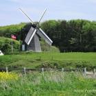 Mühle ausserhalb von Lønstrup