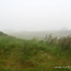 Nebel in Lønstrup