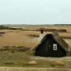 Hütte auf Holmsland Klit