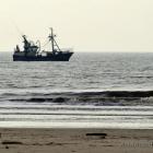 Fischerboot vor der Küste von Vejers