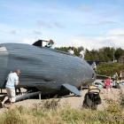 der Kletterwal