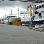 Trawler im Hafen von Hirtshals