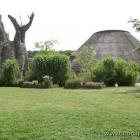 afrikanische Welt im Aalborg Zoo