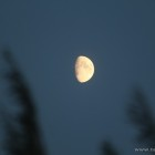 Moon over Denmark