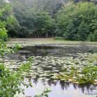 Tversted Søerne